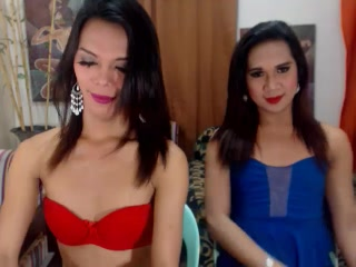 AmazingTransDuo - VIP Videos - 3489483